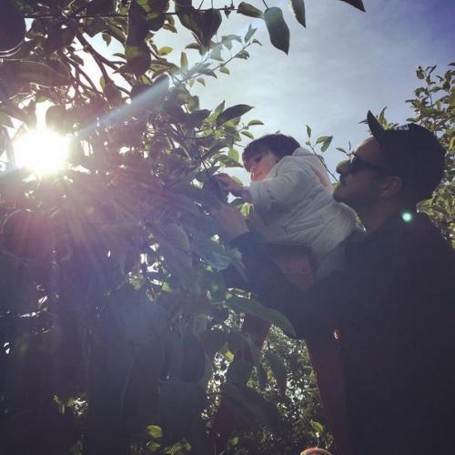 14 Photos Instagram de stars qui vont vous reconcilier avec l automne