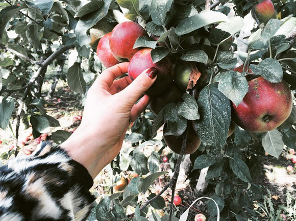 14 Photos Instagram de stars qui vont vous réconcilier avec l'automne